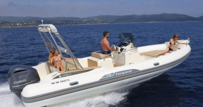 Boat rental Capelli Tempest 775 in Saint-Florent on Samboat