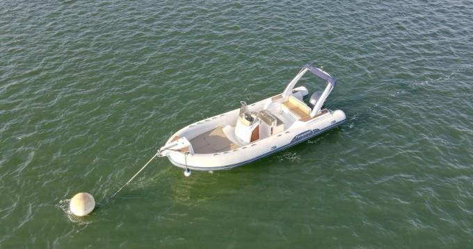 Boat rental Capelli Tempest 770 in Grand Piquey on Samboat