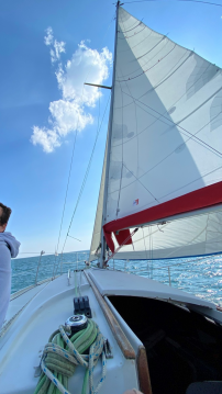 Rent a Gibert Marine Gib Sea 30 Arzon