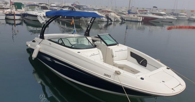 Sea Ray Sea Ray 240 Sundeck between personal and professional Puerto Deportivo de Marbella