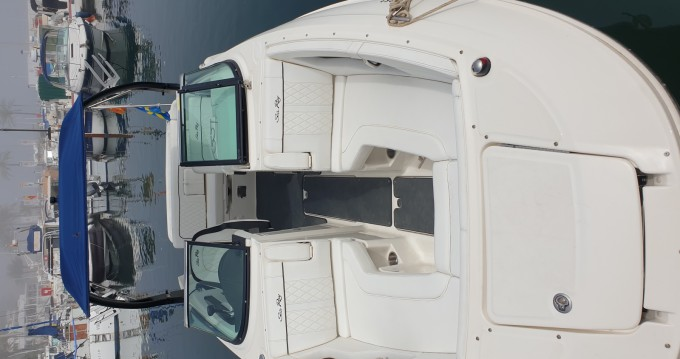 Hire Motorboat with or without skipper Sea Ray Puerto Deportivo de Marbella