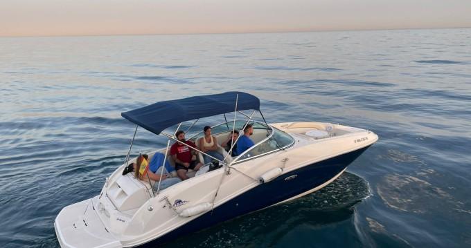 Sea Ray Sea Ray 260 SD Blue between personal and professional Puerto Deportivo de Marbella
