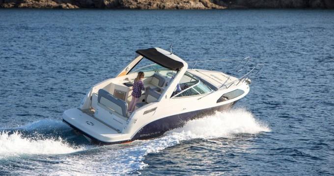 Rental Motorboat in Thonon-les-Bains - Bayliner Ciera 8