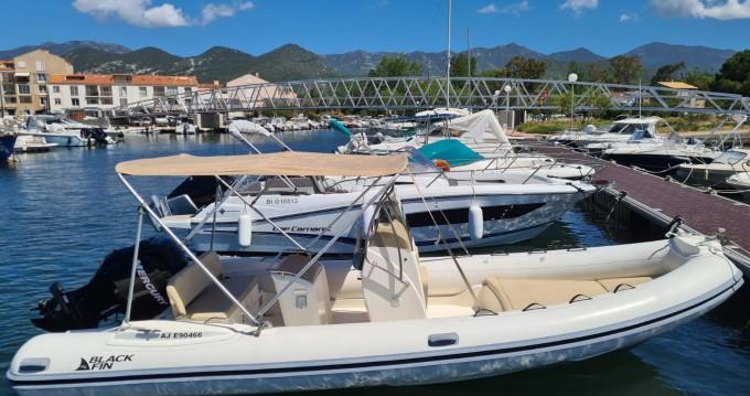 Rental yacht Saint-Florent - Black Fin Elegance 20 on SamBoat