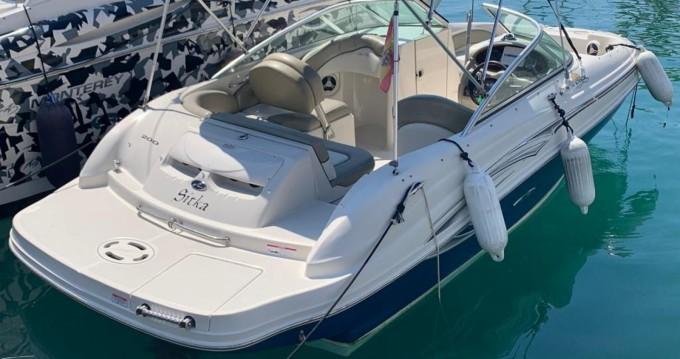 Sea Ray 200 SD between personal and professional Puerto Deportivo de Marbella