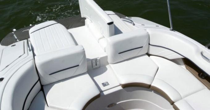 Boat rental Four Winns Horizon 260 RS in Publier on Samboat