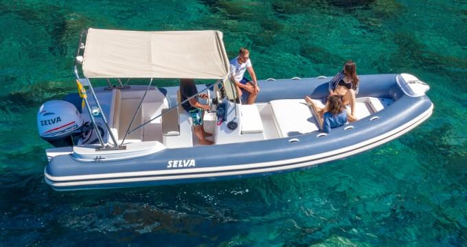 Boat rental Selva Selva 680 in Sorrento on Samboat