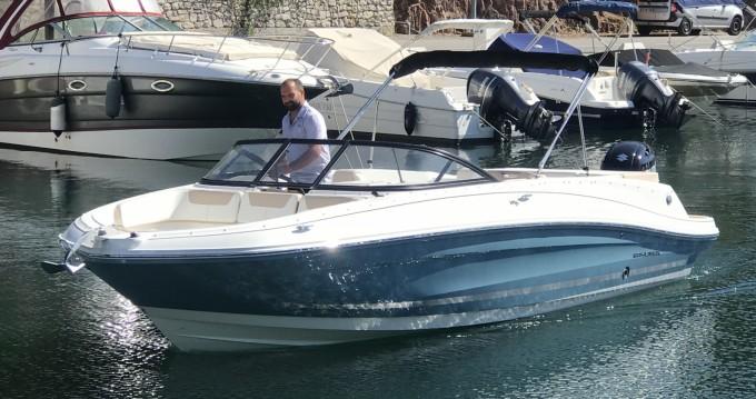 Bayliner VR6 OB between personal and professional Mandelieu-la-Napoule
