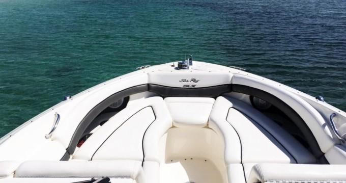 Boat rental Sea Ray Sea Ray 290 SLX in Santa Ponsa on Samboat