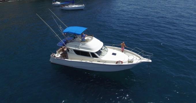 Rental Motorboat in Puerto de Mogán - Rodman Rodman 1250