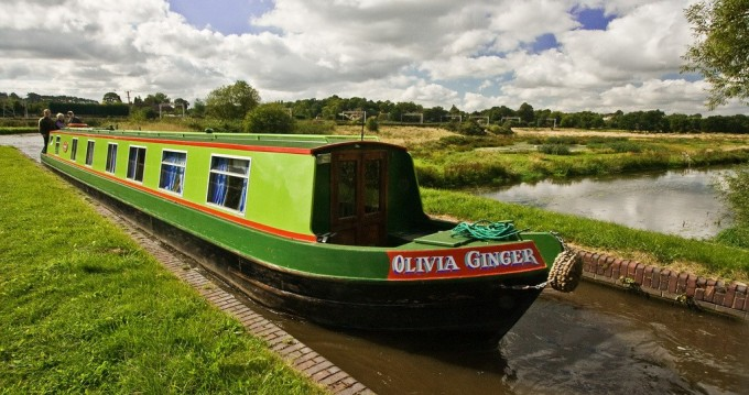 Rent a Classic Olivia Ginger Staffordshire