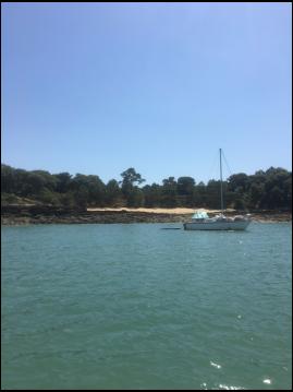 Rental Motorboat in Fouras - Quicksilver 550 Commander