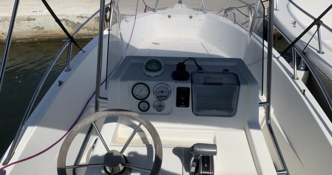 Rental yacht Saint-Florent - White Shark White Shark 175 on SamBoat