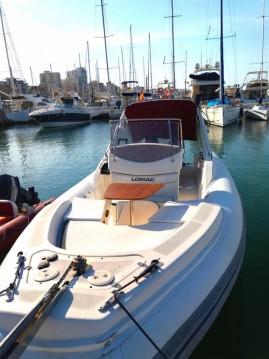RIB for rent Porto Rotondo at the best price
