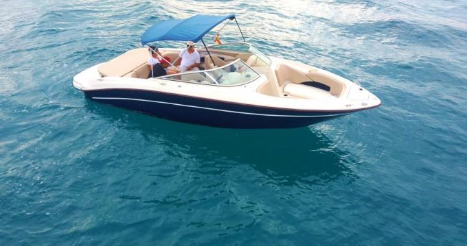 Boat rental Sea Ray Sea Ray 230 in Sant Antoni de Portmany on Samboat
