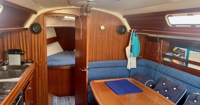 Rental yacht Bastia - Bavaria Bavaria 37 on SamBoat