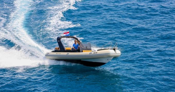 Boat rental Grginić Shark 23 in Šolta (Island) on Samboat