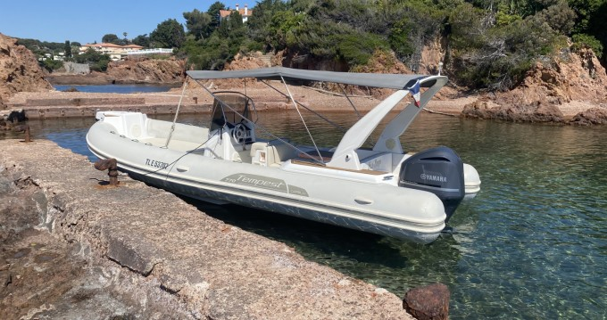 Rental yacht Fréjus - Capelli Tempest 770 Luxe on SamBoat