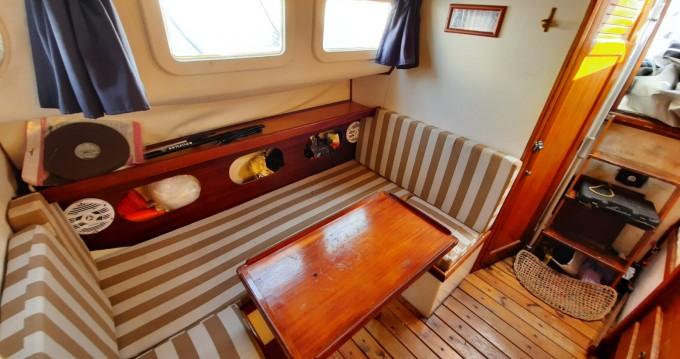 Hire Sailboat with or without skipper Llaut Santa Eulària des Riu