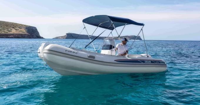 Boat rental Selva Selva D470 in Ibiza Town on Samboat