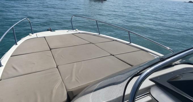 Boat rental Quicksilver Activ 755 Sundeck in Le Lavandou on Samboat