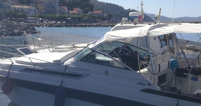 Boat rental Wellcraft antigua in Pisciotta on Samboat