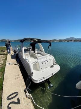 Boat rental Šibenik cheap Sea Ray 265 Sundancer