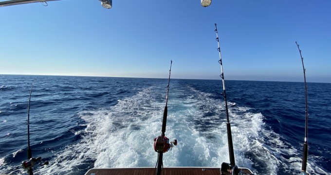 Hire Motorboat with or without skipper Sealine Limassol