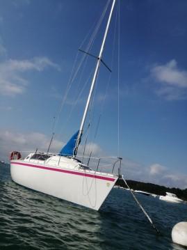 Gibert Marine Gib Sea 262 DI between personal and professional L'Herbe