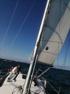 Boat rental Gibert Marine Gib Sea 262 DI in L'Herbe on Samboat