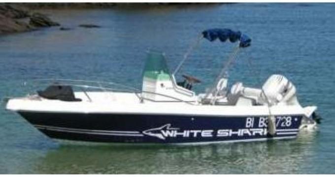 Boat rental White Shark White Shark 175 in L'Estaque on Samboat