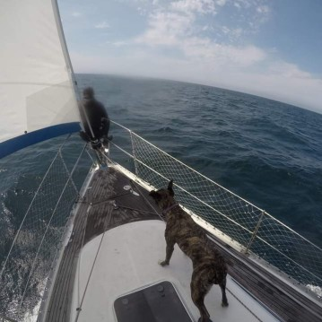 Hire Sailboat with or without skipper Elan Roatán (Island)
