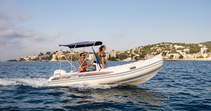 RIB for rent Port Calanova at the best price