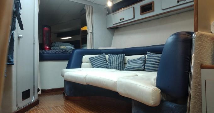 Boat rental Sea Ray Sea Ray 350 Sundancer in Sanremo on Samboat