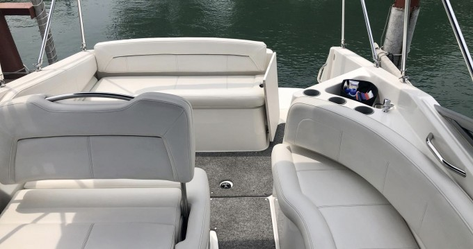 Bayliner Bayliner 255 between personal and professional Thonon-les-Bains