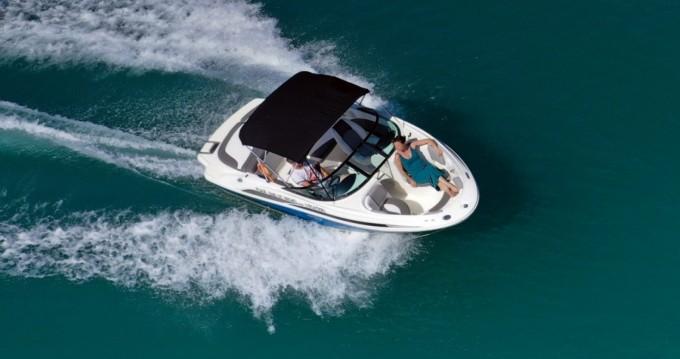 Boat rental Aix-les-Bains cheap Sea Ray 185 Sport