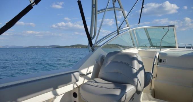 Boat rental Sea Ray Sea Ray 275 Amberjack in Tribunj on Samboat